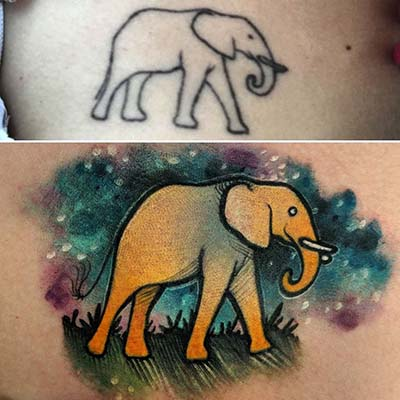 elephant tattoo cover up by green bay tattoo artist greg counard